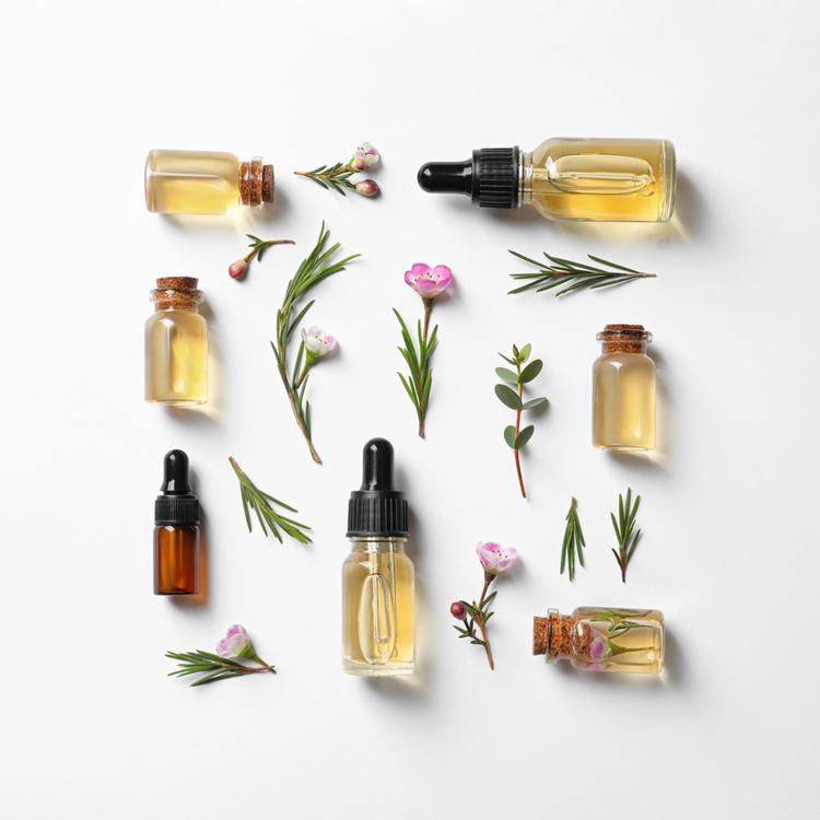 アロマ好き必見!知ってるとワクワクする『精油』7つの香りの分類を徹底解説